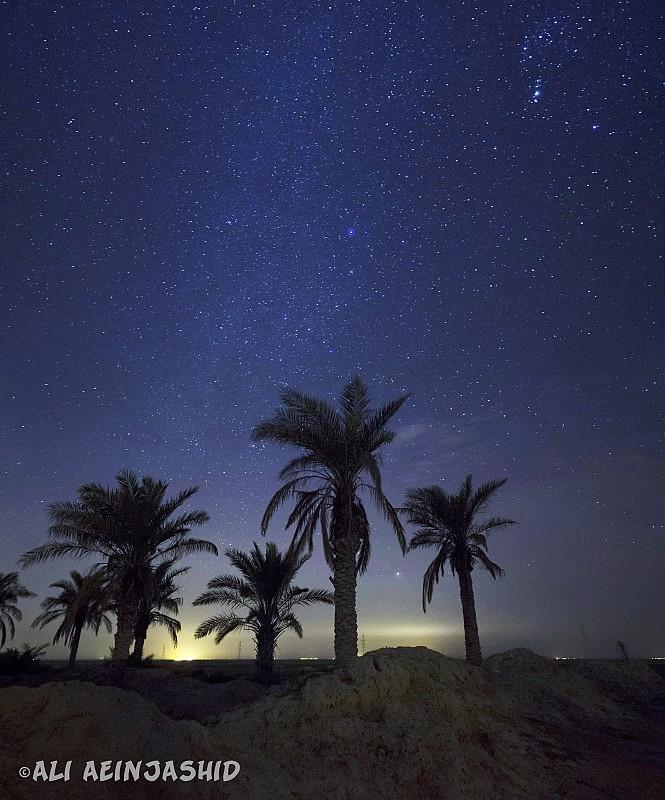 in نجومی ( ميدان ديد باز) عکاس : علی آئین جمشید شکوه نخل و آسمان