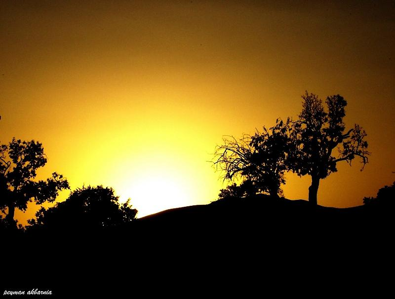 sunset fine art