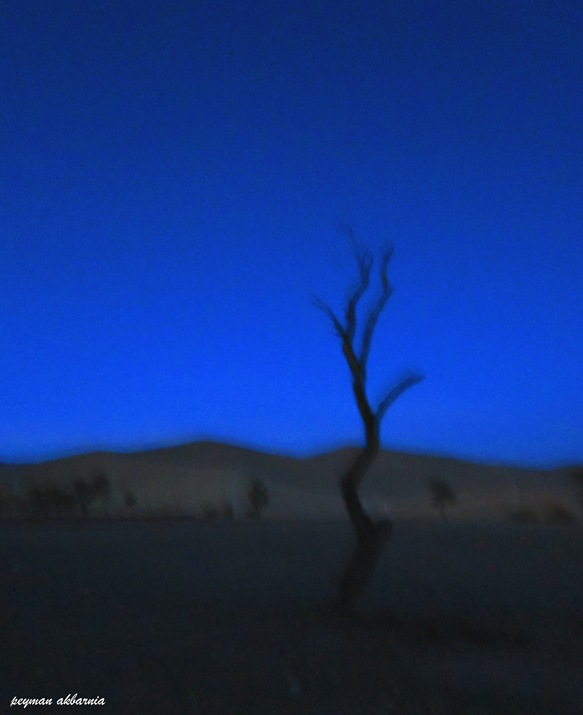 in طبیعت عکاس : پیمان اکبرنیا ترس تنهایی