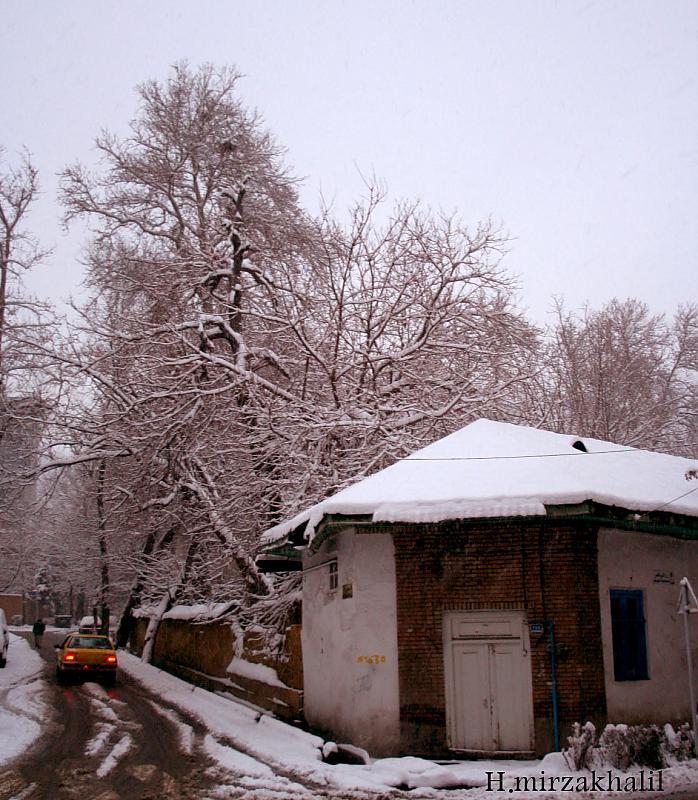 in معماری عکاس : Hamed Mirzakhalil ننه سرماي شمرون