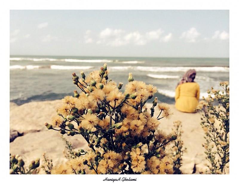 in انسان عکاس : Haniyeh Gholami در انتظارِ گودو