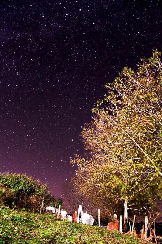 in نجومی ( ميدان ديد باز) عکاس : Mojtaba Gholami گردوی شمالی