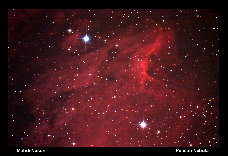 in نجومی (عمق آسمان) عکاس : مهدی ناصری Pelican Nebula