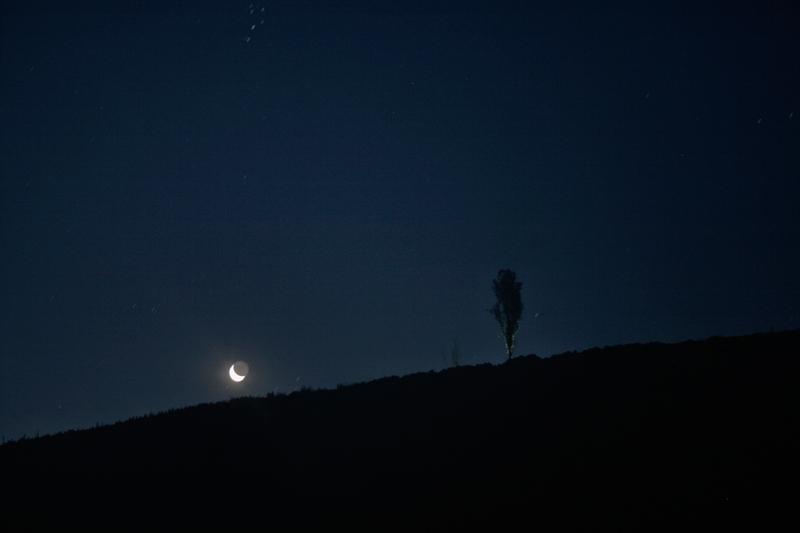 in نجومی ( ميدان ديد باز) عکاس : mohammad_reza moon shine