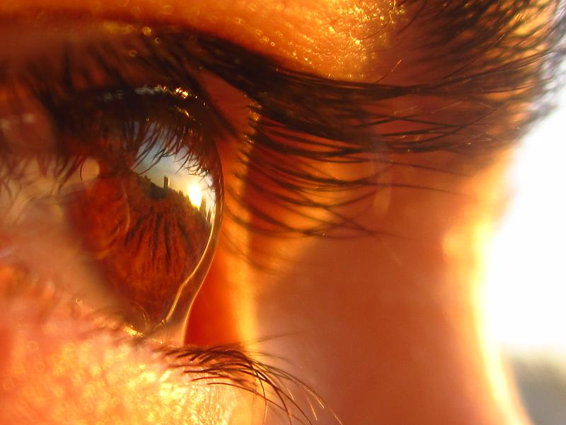 in مفهومی عکاس : شادي شهراييني طلوع خورشید در چشم مشتاق من