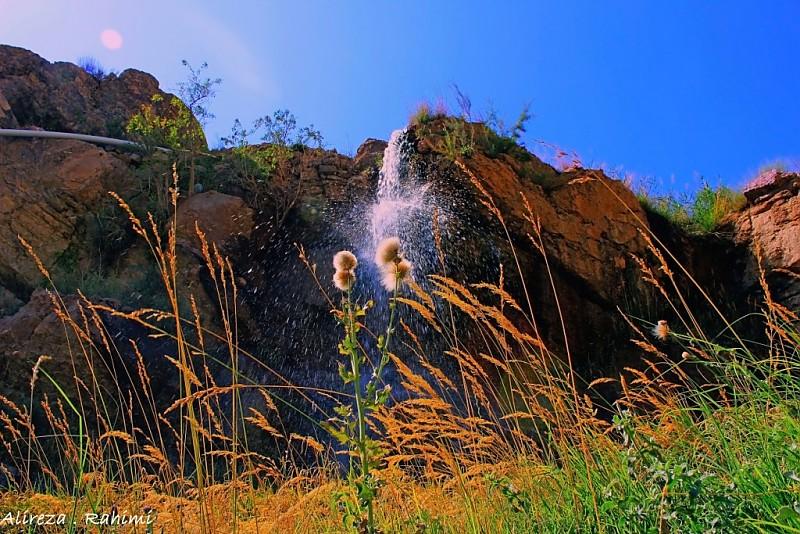 in طبیعت عکاس : A.rahimi قاصدک زیر آبشار