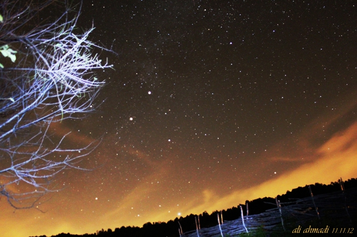 in نجومی ( ميدان ديد باز) عکاس : Ali Ahmadi پرواز مرغابی آسمان بر فراز کهکشان من..